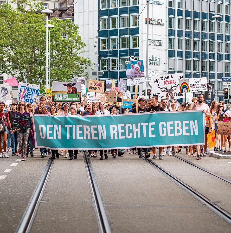 Animal Rights March Zürich – Website & Onlineshop